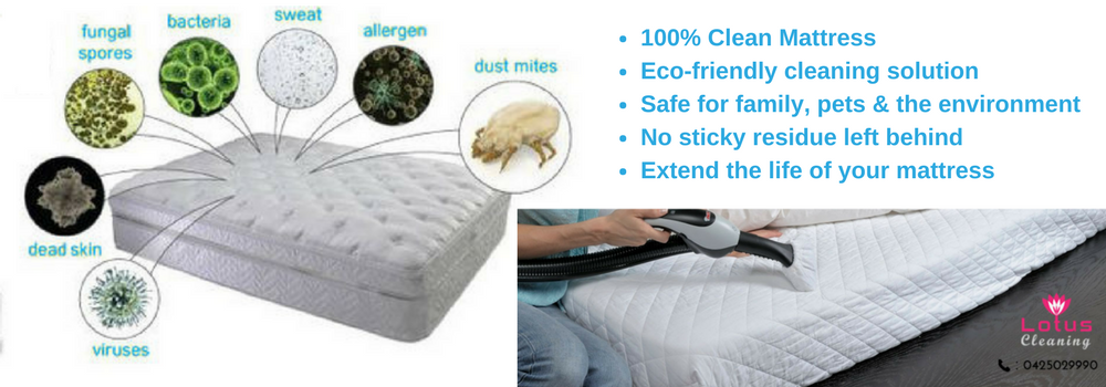mattress cleaning Bayswater North