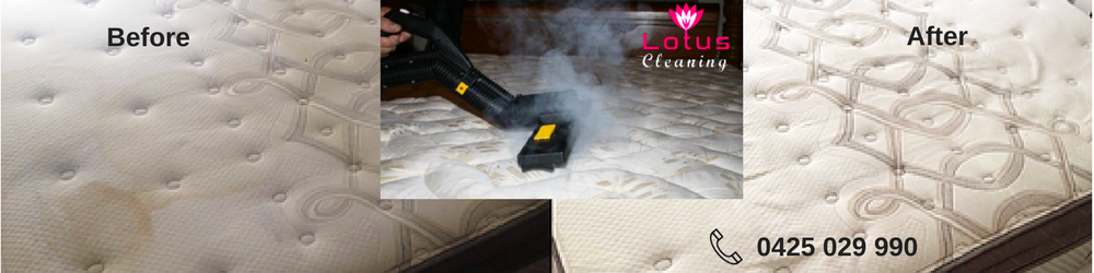 Mattress Steam Cleaning Noble Park East